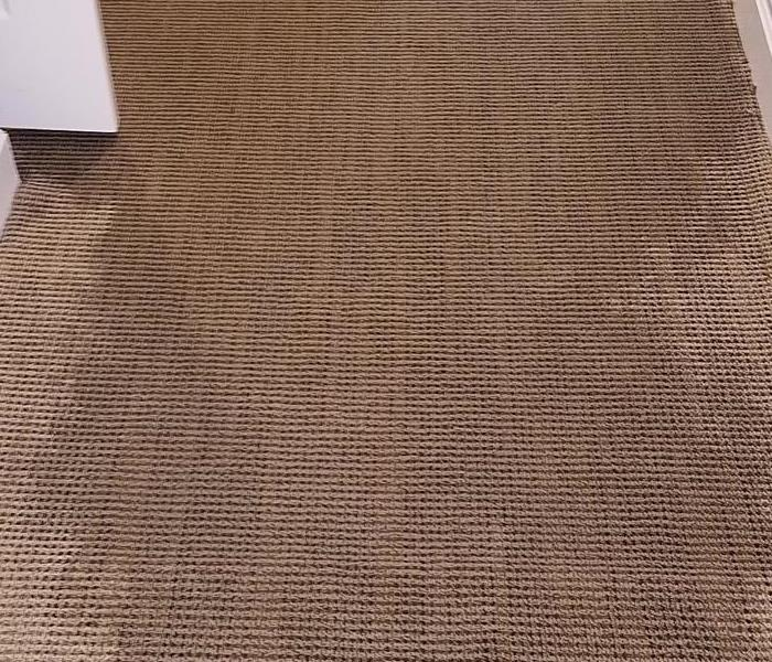 Carpet suffered from water loss