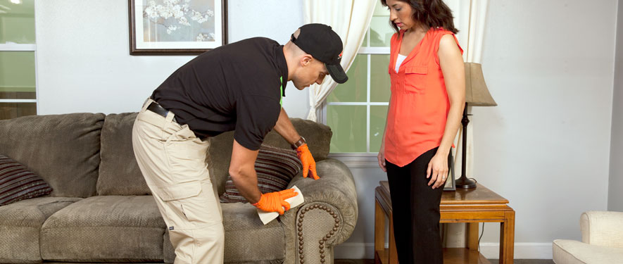 Scarsdale, NY carpet upholstery cleaning