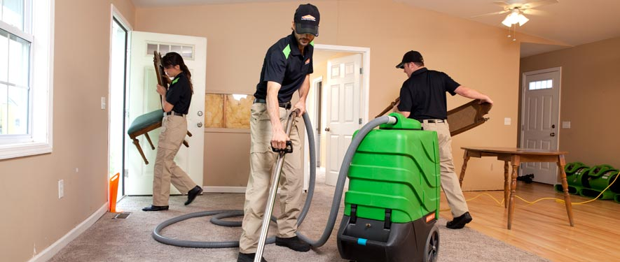 Scarsdale, NY cleaning services