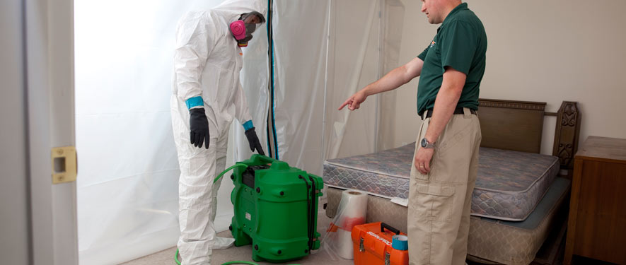Scarsdale, NY mold removal process